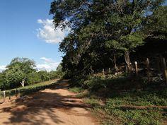 Comunidade de Tocantins-Januária-Minas Gerais-Brasil
