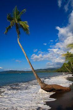 Bahia Drake, Costa Rica. this just makes me happy.