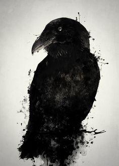 The Raven #raven #crow #bird #animal #wildlife #nature #outdoors #photomanipulation #digitalpainting  #norse #viking #mythology #hugin #munin #artprint #wallart #art