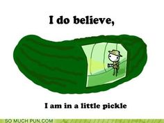 In a little pickle.
