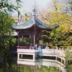 Chinese Garden in #Frankfurt - Germany
