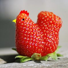 """Couldn't resist putting this under """"Fruits"""" Weird Fruit, Funny Fruit, Weird Food, Funny Vegetables, Fruits And Vegetables, Recipe Makeovers, Strawberry Kitchen, Weird Plants, Food Carving"""