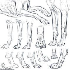 лапы собаки рисовать - Поиск в Google