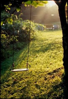 build a swing..... I use to love swinging when I was little.. good place to think