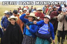 Peru Passes Monumental 10-Year Ban on Genetically Engineered Foods [article] In a massive blow to multinational agribiz corporations such as Monsanto, Bayer, and Dow, Peru has officially passed a law banning genetically modified ingredients anywhere within the country for a full decade before coming up for another review. YES TO PERU!