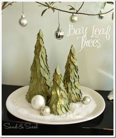 DIY Bay Leaf Trees (inspired by Pottery Barn but for a lot less!). These are so easy and inexpensive to make.