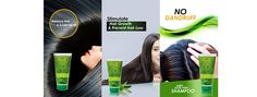 Aloe Vera Shampoo: Buy Natural Aloe Vera Shampoo for Hair Growth Silky Hair, Smooth Hair, Aloe Vera Shampoo, Natural Aloe Vera, Anti Dandruff Shampoo, Prevent Hair Loss, Fall Hair, Hair Growth, Pure Products