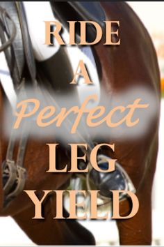 Learn how to ride a perfect leg yield! Step by step we dissect the leg yield and trouble shoot common problems. Learn how the leg yield is a valuable tool for dressage training. It's a fundamental movement for beginners and advanced riders. Horseback Riding Tips, Horse Riding Tips, Horse Tips, My Horse, Dressage Horses, Arabian Horses, Andalusian Horse, Friesian Horse, Draft Horses