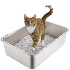 10 of the Best Ways To Eliminate Litter Box Odors That May Surprise You! Bunny Litter Box, Rabbit Litter, Best Litter Box, Cat Litter Pan, Jackson Galaxy, Hooded Litter Box, Cat Pee Smell, Cleaning Litter Box, Litter Box Covers