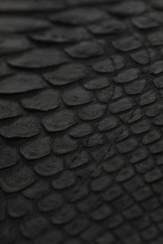 black scales
