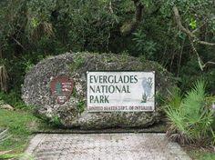 Everglades National Park, FL.