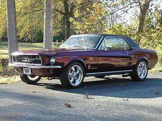 1967 Mustang                                                                                                                                                                                 More