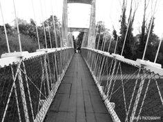 Masterton Park Bridge, NZ.