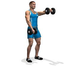 The exercise involves the forward part of the deltoids, it is fit for thedefinition of the muscle.