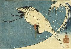 """Leyenda japonesa de la semana:""""La Grulla Agradecida"""" Esta historia trata sobre un joven que vivía solo en el campo.  Un día de invierno estaba paseando cuando escuchó un ruido extraño.  Quien lo producía resultó ser una grulla que había sido herida con una  flecha. El joven decidió ayudarla y le extrajo la flecha con mucho  cuidado, tras lo cual la grulla pudo mover el ala y remontar el vuelo. Aquella  noche alguien llamó a su puerta. Cuando la abrió ante él había una  hermosa ..."""