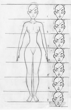 85 best Character Anatomy | Ratio images on Pinterest in 2018 ...