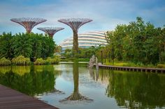 So futuristic so organized so clean so sustainable so beautiful....this is #Singapore!  #VisitSingapore #yoursingapore #loves_singapore #singaporeinsta #thisissingapore #exploresingapore #travelSG #travelphotography #instatravel #traveltheworld #thebest_capture #ig_worldclub #fantastic_shotz #special_shots #master_shots #splendid_urban #great_captures_city #citybestpics #worldbestshot #thebestdestinations #splendid_shotz #ig_shotz_cities #worldbestshot #earthvacations #discoverglobe…