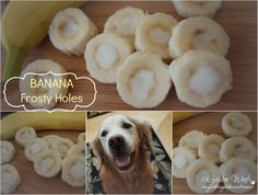 Banana Frosty Holes-Treats for the dog in your family!