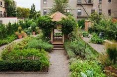 (East New York, Brooklyn)AFTERIn place of trash piles, gravel paths lead to a wisteria-covered gazebo, a grill-equipped seating area, and a garden that is watered through drip-irrigation and yields cabbages, lavender, blackberries, pears, and apricots. The streetscape is softened by low-cut decorative plantings and slender-trunked, high-pruned river birches that leave the space feeling airy and open.Landscape designer Fernando Caruncho complements the crisply sculptural buildings at his ...