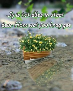 Goeie More, Morning Greeting, Afrikaans, God Is Good, Herbs, Quotes, Food, Afrikaans Language, Quotations