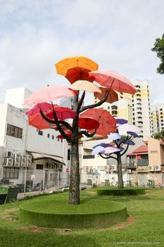 Umbrella Trees, Little India, Singapore