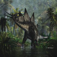 Stegosaurus: Late Jurassic, 155–150 Ma): Thyreophora: Discovered by Marsh, 1877: Artwork by Nytcrawler