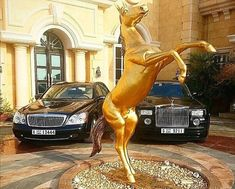 The Instagram competition for the most luxurious lifestyle has prompted users from around ...