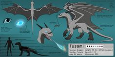 Tusami the Dragon- Reference Sheet by CanineHybrid on DeviantArt