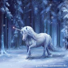 Winter Wonderland by Anne Stokes Anne Stokes, Unicorn Fantasy, Unicorn Art, Fantasy Dragon, White Unicorn, Beautiful Fantasy Art, Dark Fantasy Art, Fantasy Artwork, Final Fantasy