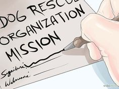 How to Start a Dog Rescue. People with a passion for dogs and compassion for the ones that are neglected and homeless might find themselves wanting to start a dog rescue to make a difference in these animals' lives. The numbers of dogs. Shelter Dogs, Animal Rescue Shelters, Rescue Dogs, Dog Hacks, Dog Boarding, Dog Crate, The Ranch, Dog Grooming, Dogs And Puppies
