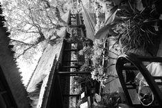 Ubud: Lotus Cafe  ©noelmurphy