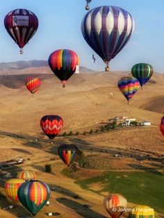 Hot air balloon race, Reno, Nevada. I have always wanted to go up in one, but I would be terrified