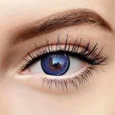 63a69f7cdab microeyelenses.com SD Blue-purple Enlarge Colored Contacts Lens   colouredcontacts colorcontactlens Colored