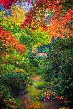Autumn Serenity, Japanese Garden, Portland, Oregon