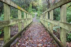 Carr wood bridge, Heeley, Sheffield, UK