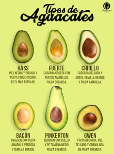 types of avocado Cooking Recipes, Healthy Recipes, Latin Food, Food Facts, My Favorite Food, Mexican Food Recipes, Love Food, Food Photography, Gourmet