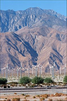 San Gorgonio Pass Wind Farm, Mt. San Jacinto, Desert Hot Springs, CA by Xavier de Jauréguiberry, via Flickr