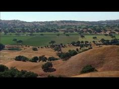 From Santa Barbara to Sonoma County, from Paso Robles to the Napa Valley, host Michael Fagan leads you on a journey throughout historic California Wine Count. Barolo Wine, Temecula Wineries, Country Videos, Napa Valley Wine, Wine Guide, Types Of Wine, Expensive Wine, Wine Case, California Wine