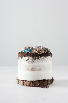 """6"""" Vanilla Madeira cake covered in fluffy white buttercream and topped with Oreo cookie dirt, Valrhona cocoa nib pebbles and gum paste succulents."""