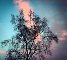 When glance turns  To a sky-blue clear day, When the purple-red sun Sinks low at sirocco, Here nature bestows glory, Joy, sound to eye and heart, And we find in color lore, The universal truth. . - - - .  Wenn der Blick an heitern Tagen Sich zur Himmelsbläue lenkt, Beim Sirok der Sonnenwagen Purpurrot sich niedersenkt, Da gebt der Natur die Ehre, Froh, an Aug und Herz gesund, Und erkennt der Farbenlehre Allgemeinen, ewigen Grund.  Zahme Xenien VI. ~Johann Wolfgang von Goethe, Xenien  #heart…