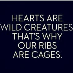Hearts are wild creatures