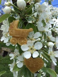Candles from beeswax, beeswax products and beekeeping supplies.  Svíčky ze včelího vosku, včelí produkty a včelařské potřeby.