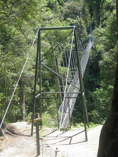 Waiohine Gorge Swing Bridge in New Zealand. Despite my fear of heights I made it across!