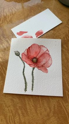 Flower Drawing Discover Watercolor Red Poppy Painting Watercolor painting video by Brianna Johnson Art. Tap the link to see more! Watercolor Flowers Tutorial, Watercolor Poppies, Watercolor Drawing, Watercolor Cards, Painting & Drawing, Watercolor Painting Tutorials, Poppies Art, Poppies Painting, Watercolor Video