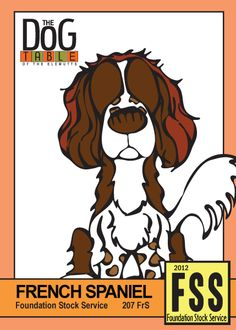207 FrS - French Spaniel from the Foundation Stock Service Class Cards