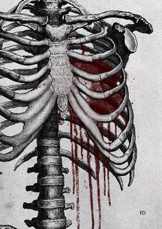 scary art blood Black and White creepy painting horror draw body dark heart skel. - scary art blood Black and White creepy painting horror draw body dark heart skeleton ribs Macabre g - Skeleton Drawings, Skeleton Art, Horror Drawing, Horror Art, Rib Cage Drawing, Spine Drawing, Art Sketches, Art Drawings, Creepy Paintings