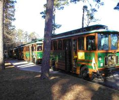 The Eureka Springs Trolley - for those that want to avoid the hills like me!
