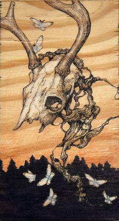 Amazing illustration by Lauren Marx