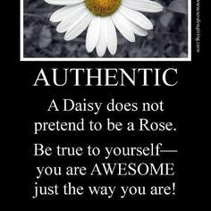 Daisy quote