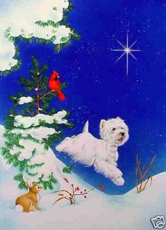 "Westie Christmas Cards ""Joy"" by Borgo 